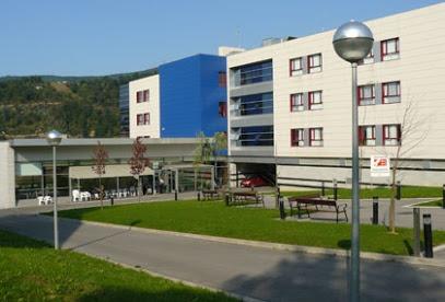 Residencia y Centro de Dia Bizkotxalde (Grupo Babesten Basauri)